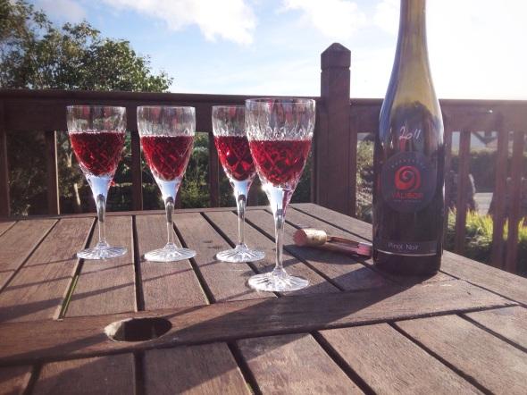 Hungarian Wine and Irish Sunshine - an unusual mix.