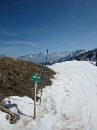 The piste to Torgon