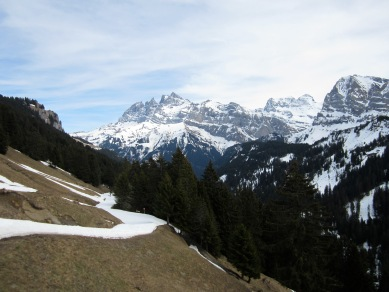 Piste and grass.