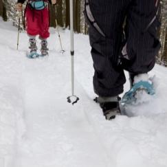 Vs. Snow Shoes