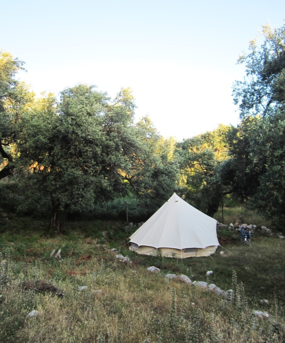 Bell Tent in the Olive grove